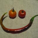 Tomaten chili smiley (c) manuela waldner 1