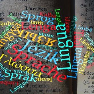 Bild zu:Sprachlandschaften – Zwischenwelten