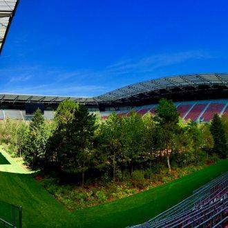 Bild zu:For Forest: Der Wald im Stadion