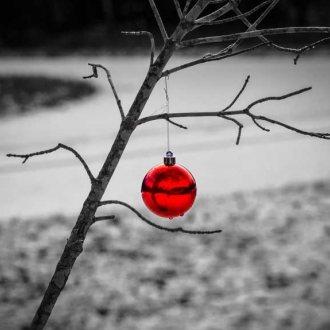 Bild zu:December mesec priložnosti: bolj biti kot imeti I Dezember ist der Monat der Gelegenheit: mehr zu sein als zu haben