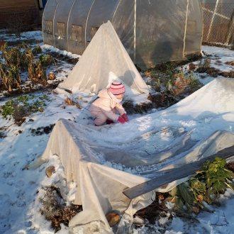 Bild zu:Vrtna pomočnica v decembru