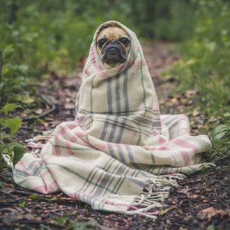 Bild zu:Bewegen gegen soziale Kälte
