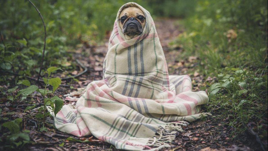 Bewegen gegen soziale Kälte